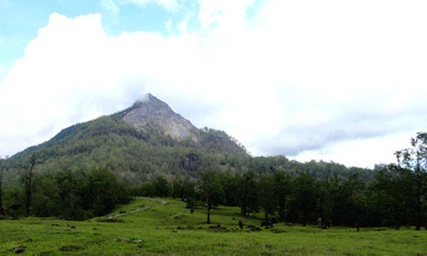 Gunung Timau/Copyright: nebulamun.wordpress.com
